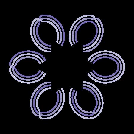 Permutation flower